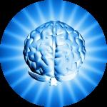 Образовательные методики: повышаем IQ