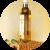 Масло абрикосовых косточек в косметологии для лица, волос и ногтей