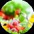 Средиземноморская диета: худеем по-итальянски