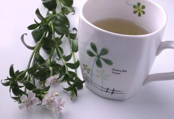Фиточаи: пейте на здоровье