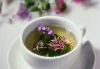 Лекарственные растения против депрессии