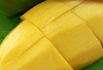 Масло манго: состав, свойства, применение и лечение