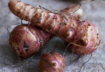 Топинамбур –  земляная груша - уникальный продукт питания и лечения
