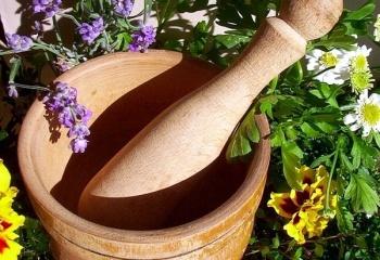 Фитотерапия: травы для похудения