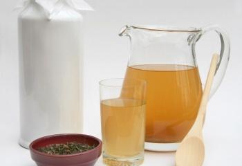 Чайный гриб для похудения: рецепты и рекомендации