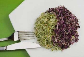 Макробиотика: естественное питание