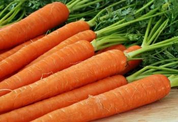 Питательная маска из моркови