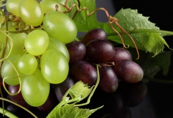 Виноградные косточки против варикоза