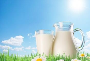 картинка для детей молоко