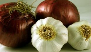 Лук и чеснок издавна применялись в качестве профилактических средств от гриппа