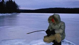 как поймать сорогу зимой видео